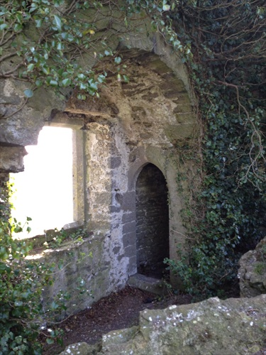 Photo essay: Loughmoe Castle.