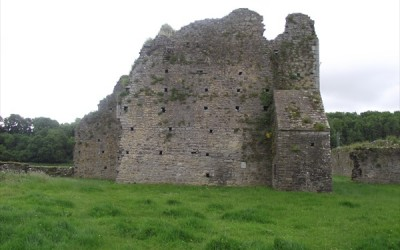 Ballybeg Priory, co. Cork