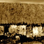 MI-Thatched-Cottages-Main