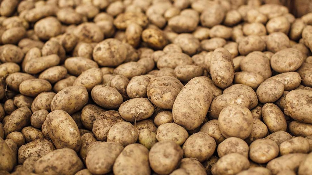 Podcast – People and Potatoes: Was Ireland overpopulated in 1845? (The Great Famine III)