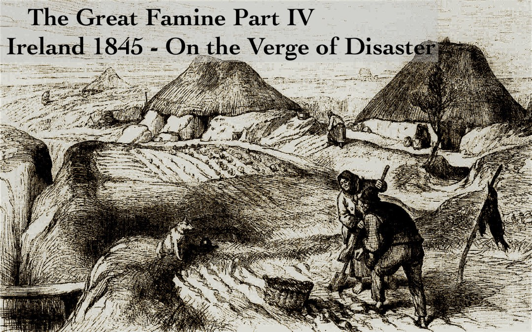 the great famine Learn about the great hunger carret icon learn  yet the famine occurred in a country that, despite concurrent economic problems, was at the center of a still-growing empire and an integral part of the acknowledged workshop of the world there can be no doubt that, despite a short-term.
